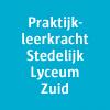 Stedelijk Onderwijs Antwerpen - jobs - Mohamed Elbali